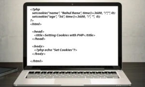 Setting Cookies with PHP